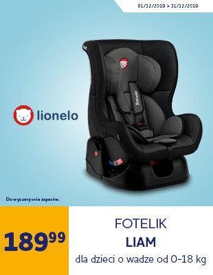 Fotelik samochodowy LIONELO Liam plus, szary 0-18 kg