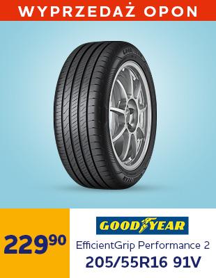 Goodyear EfficientGrip Performance 2 205/55R16 91V